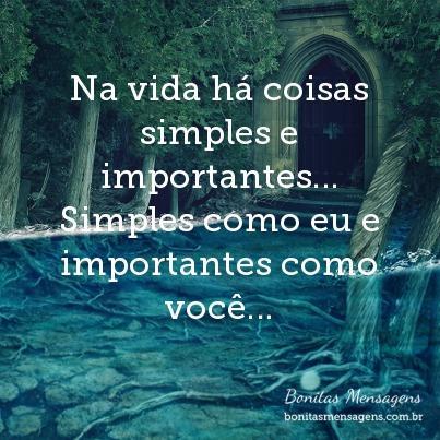 Na Vida Há Coisas Simples E Importantes Simples Como Eu E