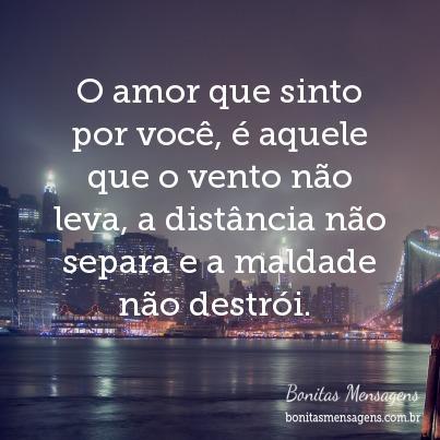 O Amor Que Sinto Por Você é Aquele Que O Vento Não Leva A