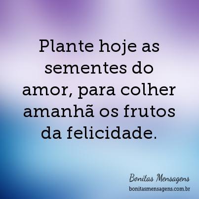 Plante hoje as sementes do amor, para colher amanhã os frutos da felicidade.